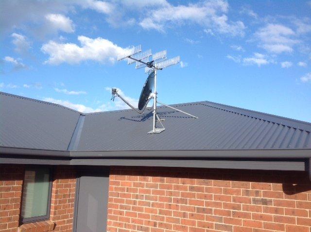 bird proof antennas Hobart