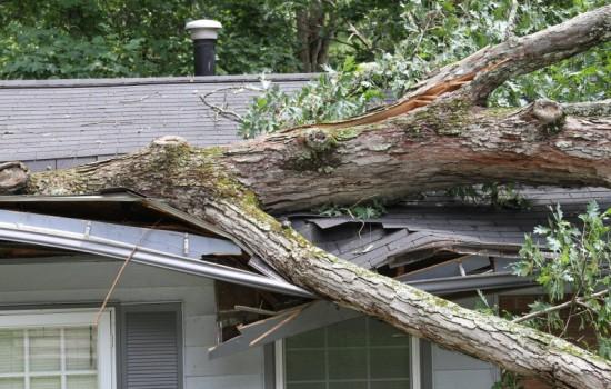 storm-damaged-roof