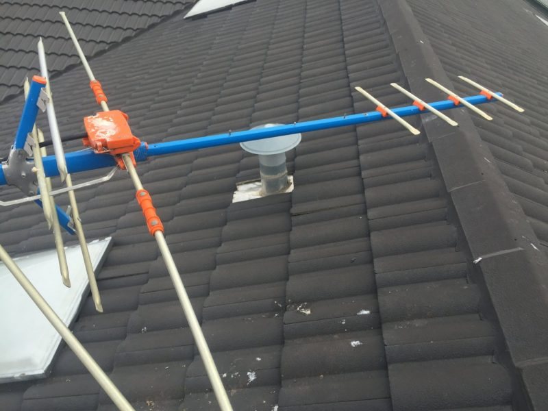 Birds destroy antenna in Lilydale, local franchisee flies to the rescue