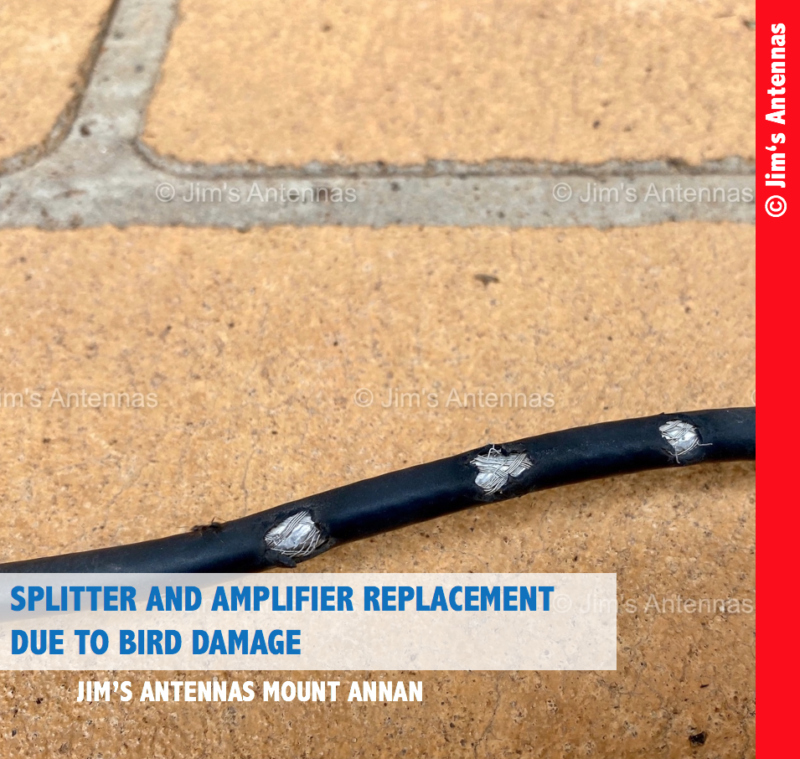 SPLITTER AND AMPLIFIER REPLACEMENT SOUTH-WEST OF SYDNEY DUE TO BIRD DAMAGE