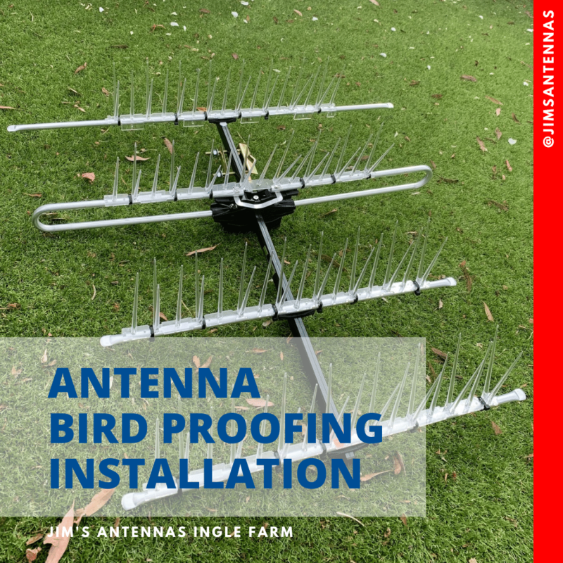 Bird proofing Antenna Installation in Golden Grove!